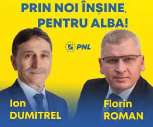 PNL - Alegeri Parlamentare 2020