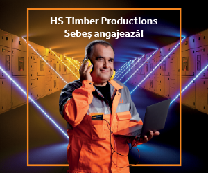 HS Timber Productions Sebeș