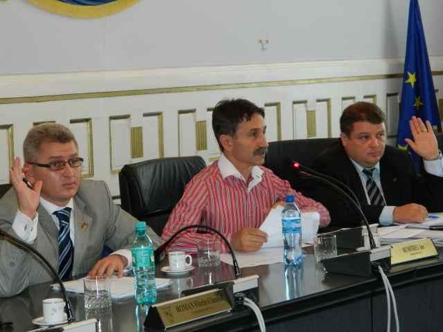 Ion Dumitrel,Florin Roman,Alin Cucui,Consiliul Judetean Alba