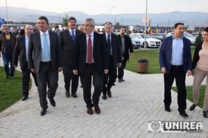 Tariceanu, Alba Iulia01