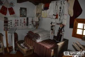 muzeul satului salciua24