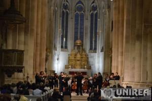 Orchestra de Camera Alba Iulia (3)