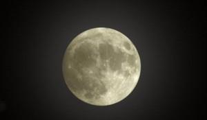 luna rece