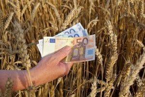 plata fermieri
